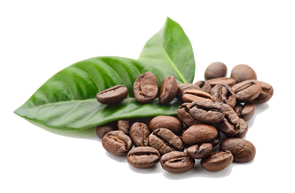 koffiebar-huren-voor-evenement